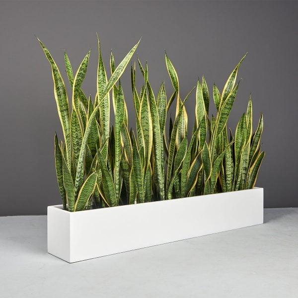 Wheeling Narrow Rectangular Planter Matte Bright White