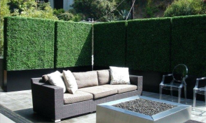 Privacy with planters