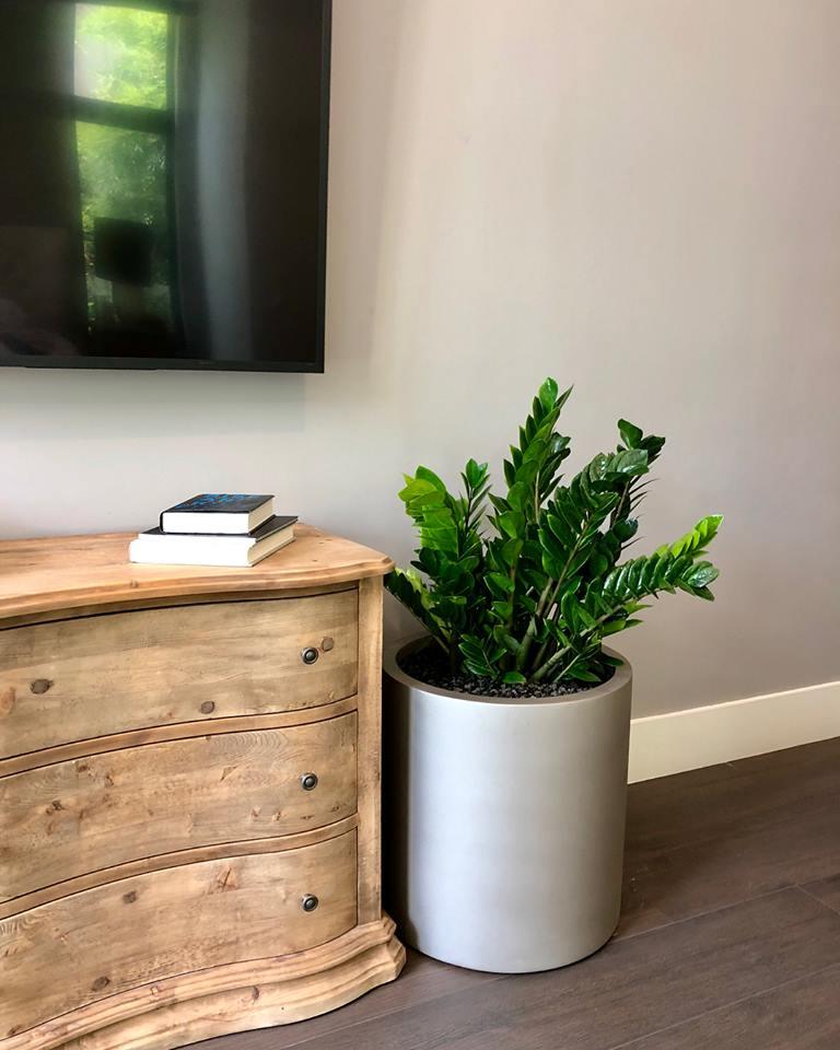 modern planter designs for homes