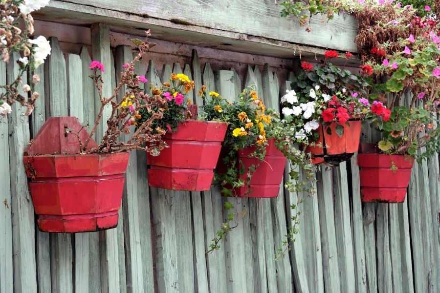 Red fence planters