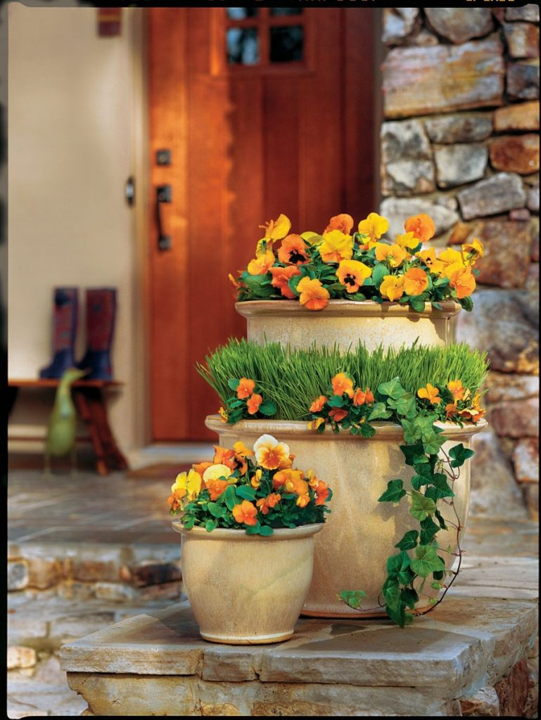 autumn arrangement with flowers and plants