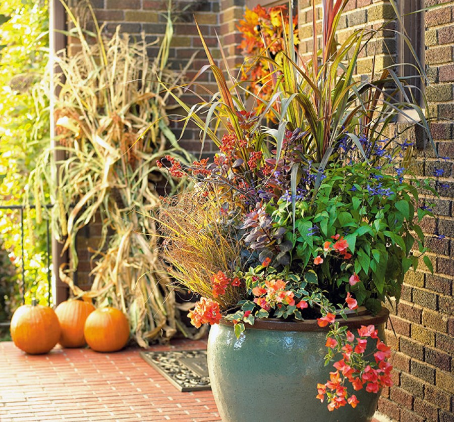 Fall containers with ornamental grasses