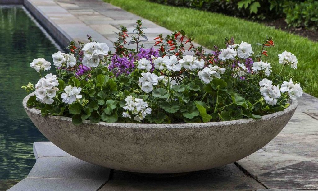pot near water feature in the garden
